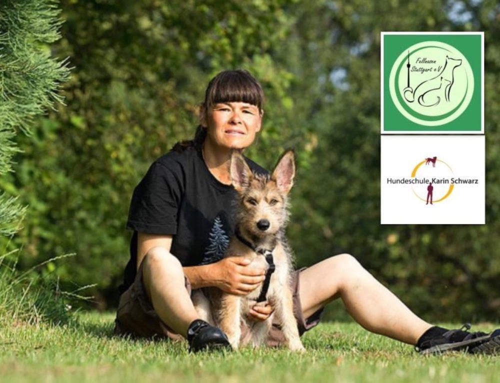 Wie lernt (m)ein Hund? am 24.11.17