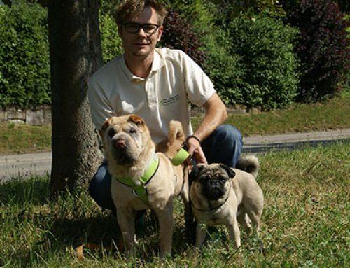 EVENT: Wenn's vorne zwickt – Allergien bei Hunden am 28. März