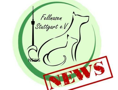 News zu unserer Vermittlungstätigkeit