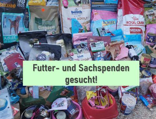 Futter- & Sachspenden gesucht!